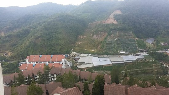 Copthorne Hotel Cameron Highlands: view