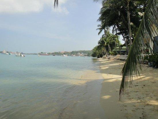 Villa Tanamera : Beach