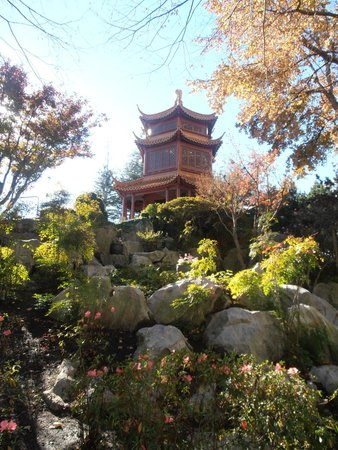 Chinese Garden of Friendship: Truly beautiful