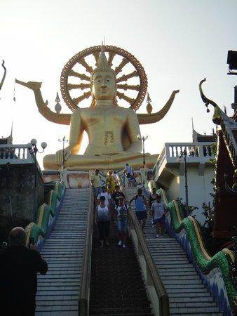 Villa Tanamera : Big Budda