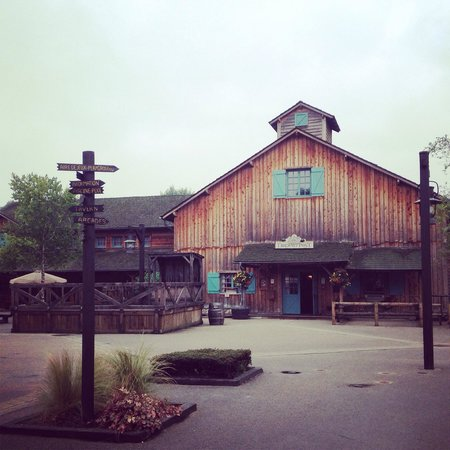 Disney's Davy Crockett Ranch : Shop and bar