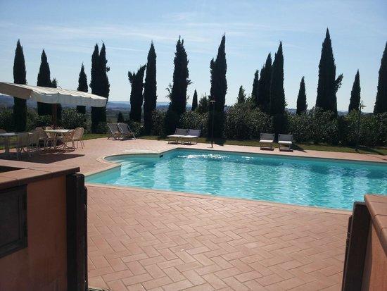 Agriturismo Santo Pietro: The swimming pool
