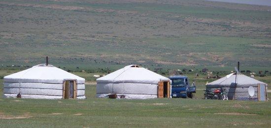 Zavkhan Trekking - Day Trips: Gers on the steppe