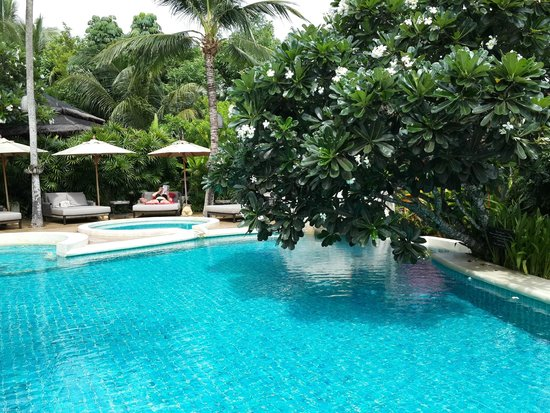 Zazen Boutique Resort & Spa: in love with the tree...