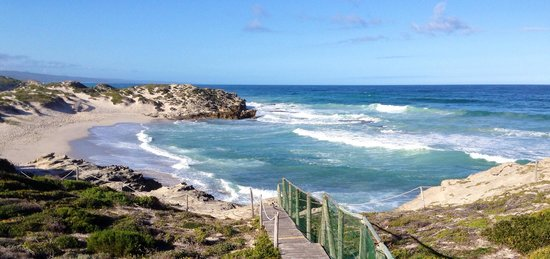 De Hoop Nature Reserve Cottages : Beautiful beach, whales are breaching everywhere in front! Must go there, walk the dunes and enj