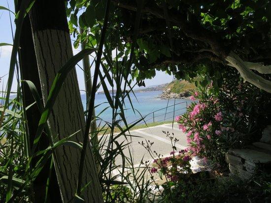 O Viomichanos: View