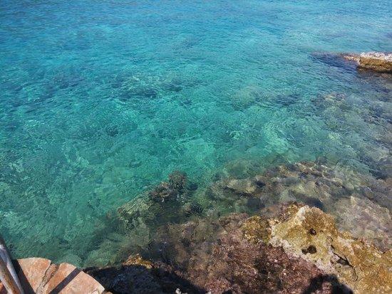 Hotel Club Barbarossa : Denizin güzelliği