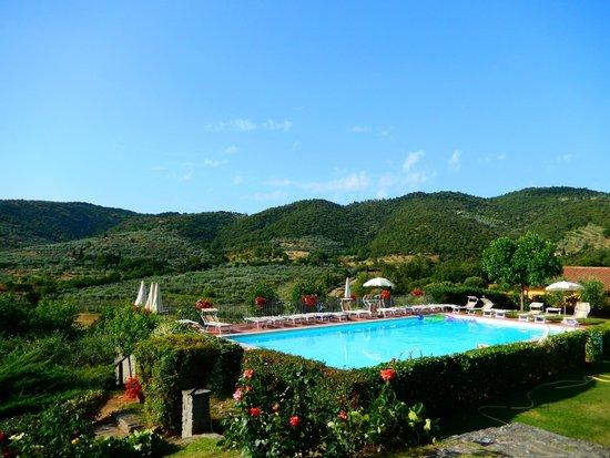 Agriturismo Cotoreggio: Прекрасный бассейн