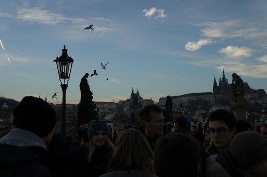 Puente de Carlos: Вид на Градчаны