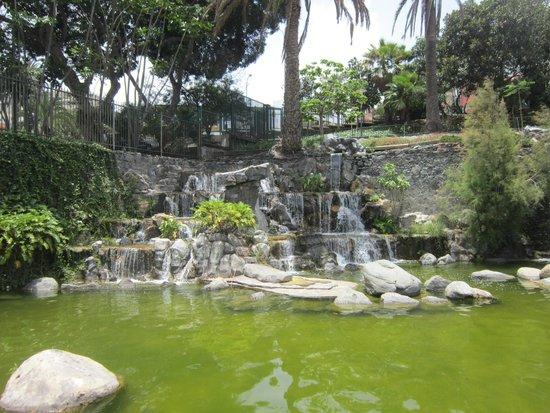 Doramas Park: Parque Doramas
