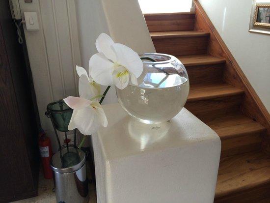 Kanonkop Guest House: Flower
