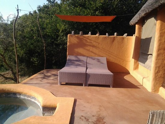 Amakhala Safari Lodge: Sun loungers on patio - completely private and unoverlooked.