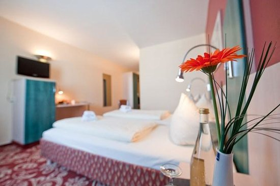 Dormotel Business Hotel Bruchsal: Double room