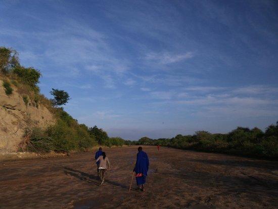 Osupuko Lodge: view