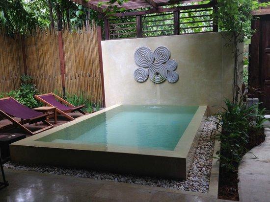 Anantara Rasananda Koh Phangan Villas: Piscina in suite