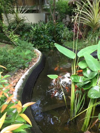 Anantara Rasananda Koh Phangan Villas: Jungle