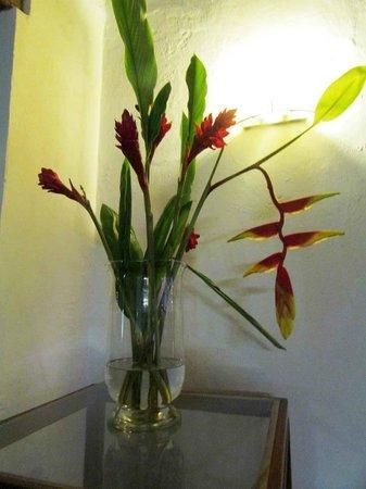 Hotel Monterrey: Heliconias caribe