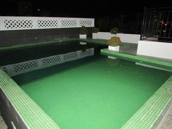 Hotel Monterrey: Piscina en la terraza