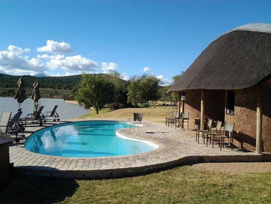 Buffelsdrift Game Lodge : pool next to waterhole