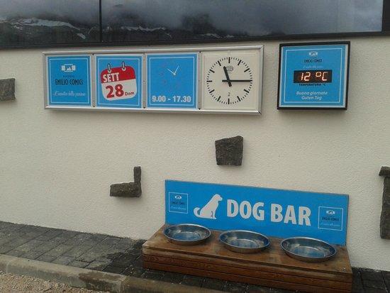 Rifugio Emilio Comici: Dog bar