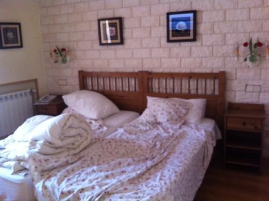 Hostal Adria Santa Ana : Habitación