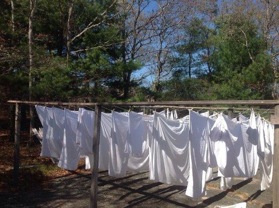 Bay Motor Inn: Linens done fresh on site crisp to your bed