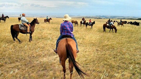 Sweet Grass (Dude) Ranch : The trails are amazing!