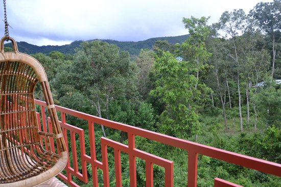 Panthalams Homestay: View from balcony