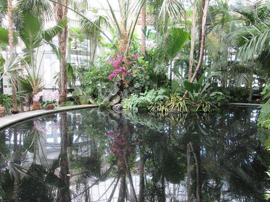The Wetland Picture Of New York Botanical Garden Bronx Tripadvisor