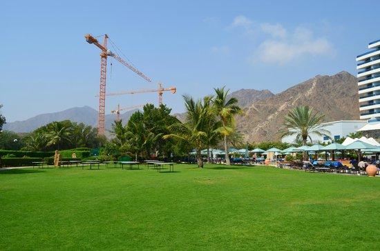 Le Meridien Al Aqah Beach Resort : стройка небольшая рядом, она не мешает.