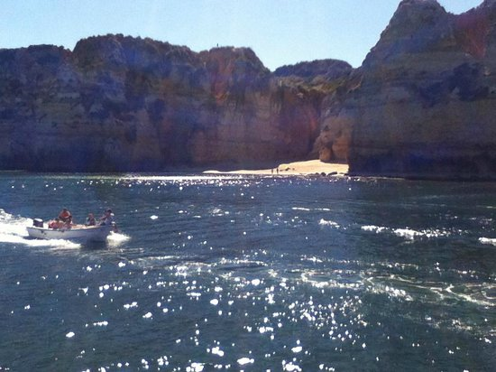 Hotel Luar: dolphin trip views