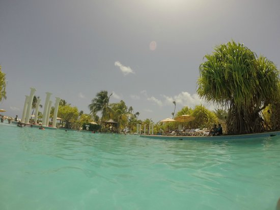 Gran Melia Golf Resort Puerto Rico : Another Pool View