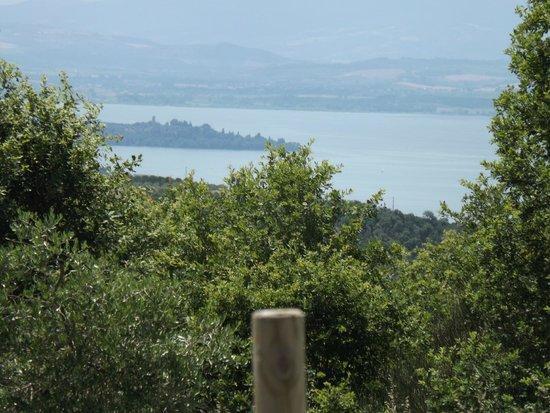 Locanda del Galluzzo: panorama dell'isola maggiore, dall'albergo