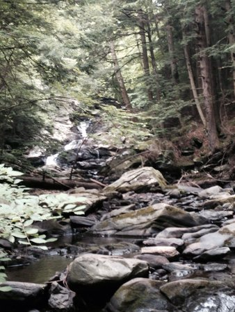 Wahconah Falls State Park: From down stream