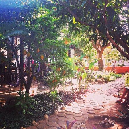 Osa Mariposa Hotelito : The view at private 9