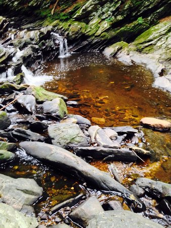 Wahconah Falls State Park: A lot of iron in the water