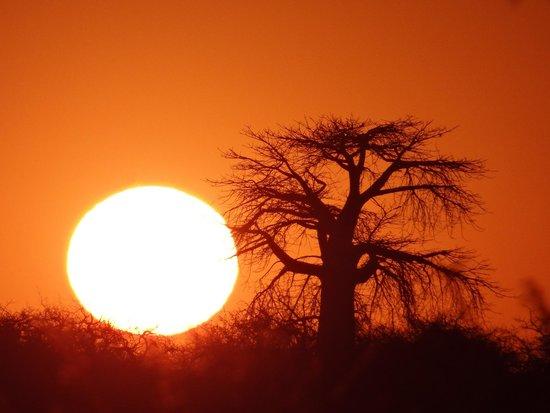 Kubu Island: Sunset