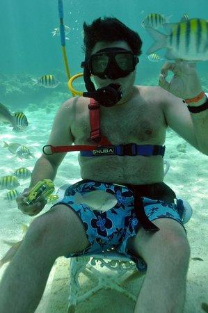 Ocean Adventures Bavaro Splash: Great value for money!