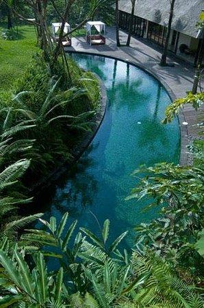 Komaneka at Bisma: Lower Pool/Circular leisure Pool