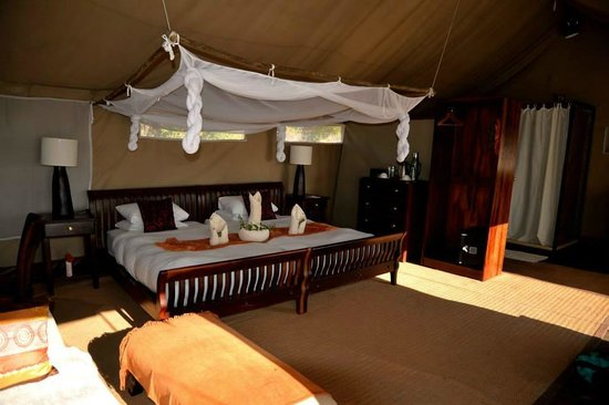 Linyanti Bush Camp: Room 3