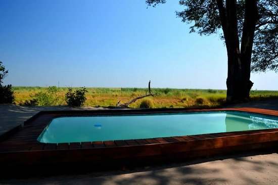 Linyanti Bush Camp: Plunge Pool
