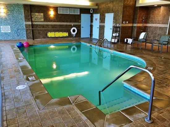 Hilton Garden Inn Billings : Pool