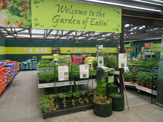 Brechin Castle Garden Centre: Find out how to Grow your Own