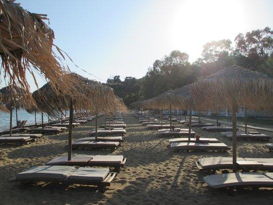 Skiathos Princess Hotel : Beach at sunset