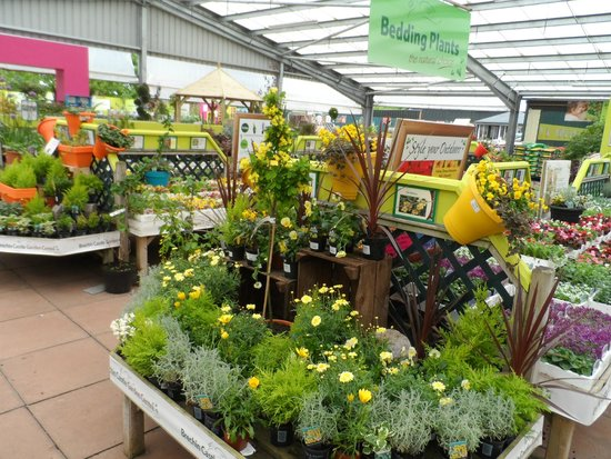 Brechin Castle Garden Centre: Be inspired to create Perfect Pots