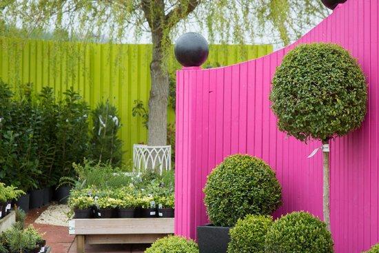 Brechin Castle Garden Centre: Browse around our colourful Planteria