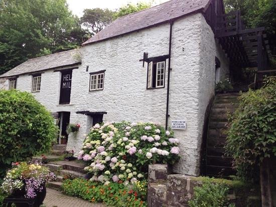 Hele Corn Mill and Tea Room: the mill