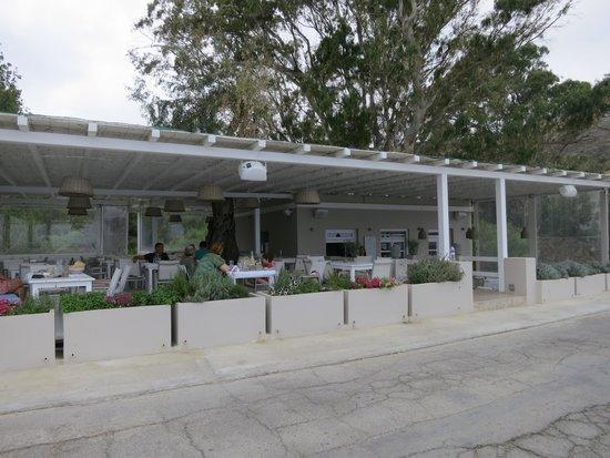 Gialia Restaurant: Gialia Beach Taverna frontage