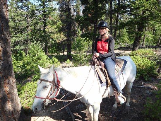 Jasper Riding Stables: Riding