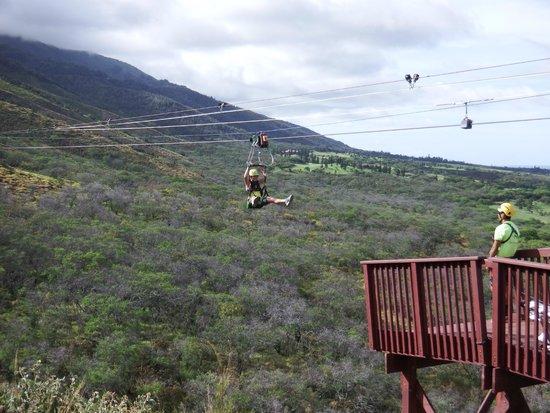 Flyin Hawaiian Zipline : Coming in for a landing